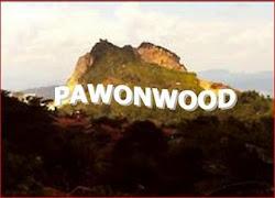 PAWON WOOD