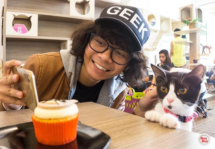 Cat cafe, Cutie Cats Cafe Kemang, Jakarta