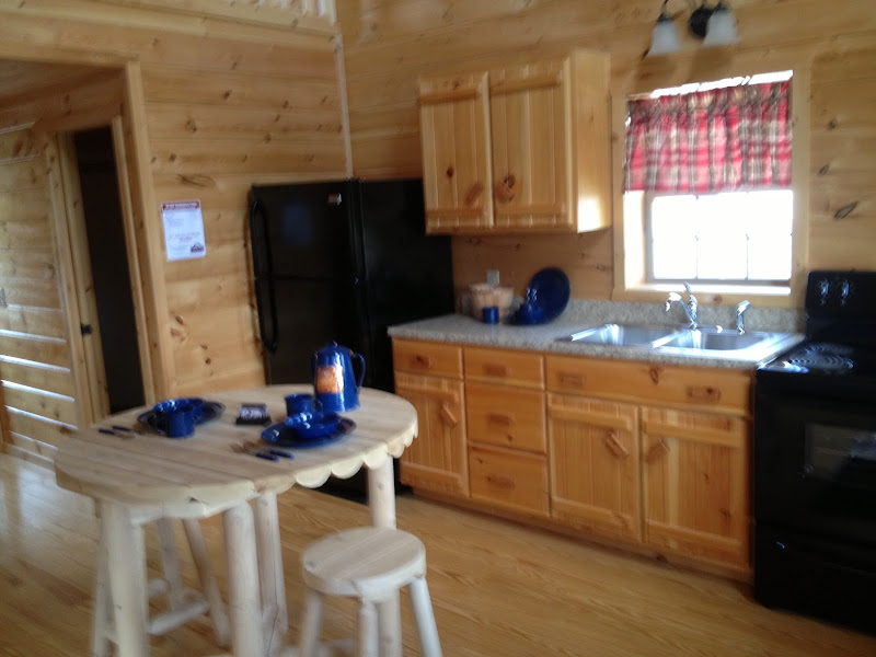 The kitchen cabinets echo the log cabin theme title=