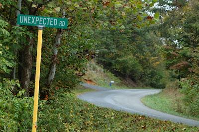 Panneaux comiques - Page 4 Unexpected-Road