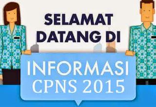 Pemerintah Tetap Adakan Penerimaan CPNS 2015 Secara Selektif
