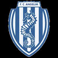 F. C. ANGELIM