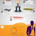 أنفوجرافيك: مقابلة العمل و أساسيات اجراء مقابلة عمل ناجحة
