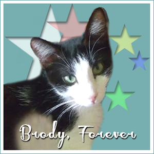 R.I.P Brody