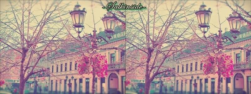 -Salkinside-
