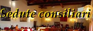 Sedute Consiglio Comunale e votazioni