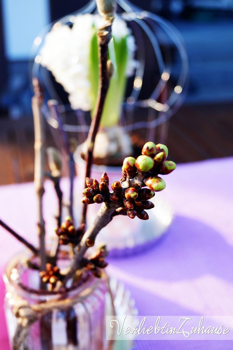 Frühlingsdeko Kirschzweige Weidenkätzchen im Glas Makro