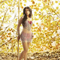 Sameera Reddy on G Venket Ram Calendar 2012 Photoshoot Stills
