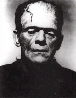 フランケン シュタイン 怪物 の 名前 フランケンシュタイン - Wikipedia
