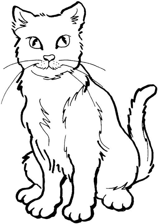 Coloriages a imprimer may 2011 - Un chat dessin ...