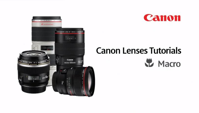 Canon EF Lenses: Macro Lenses - Lens Tutorial 2/5