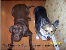 Ginger & Mojo