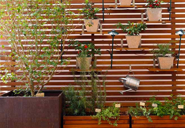 horta jardim vertical:Dicas de como cultivar temperos e ervas em espaços pequenos.