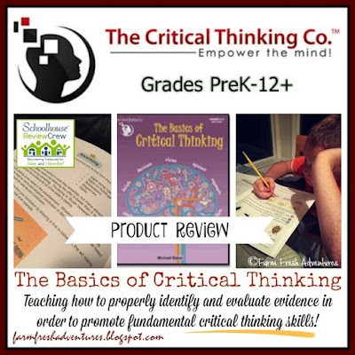 Basics of Critical Thinking ~ Product Review