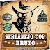 Seleção Top Lançamentos Sertanejos - De Outubro - 2014