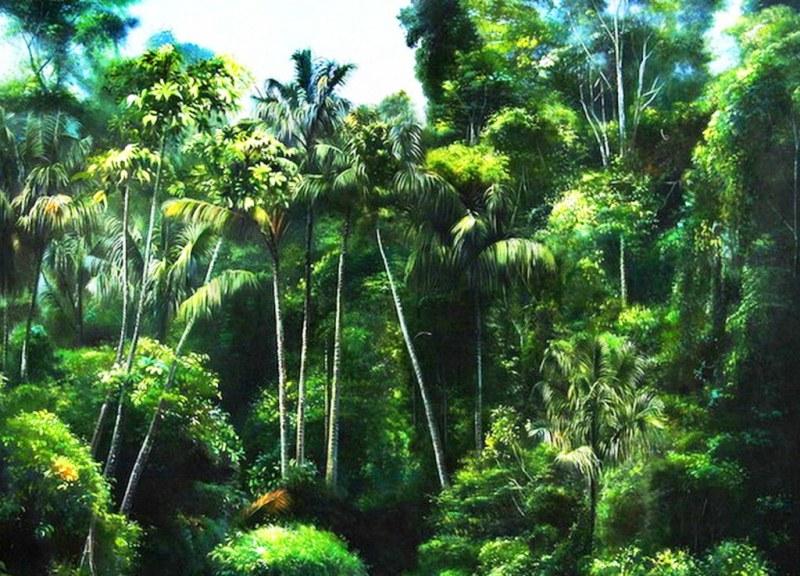 paisajes de la selva pinturas de paisajes selvaticos paisajes