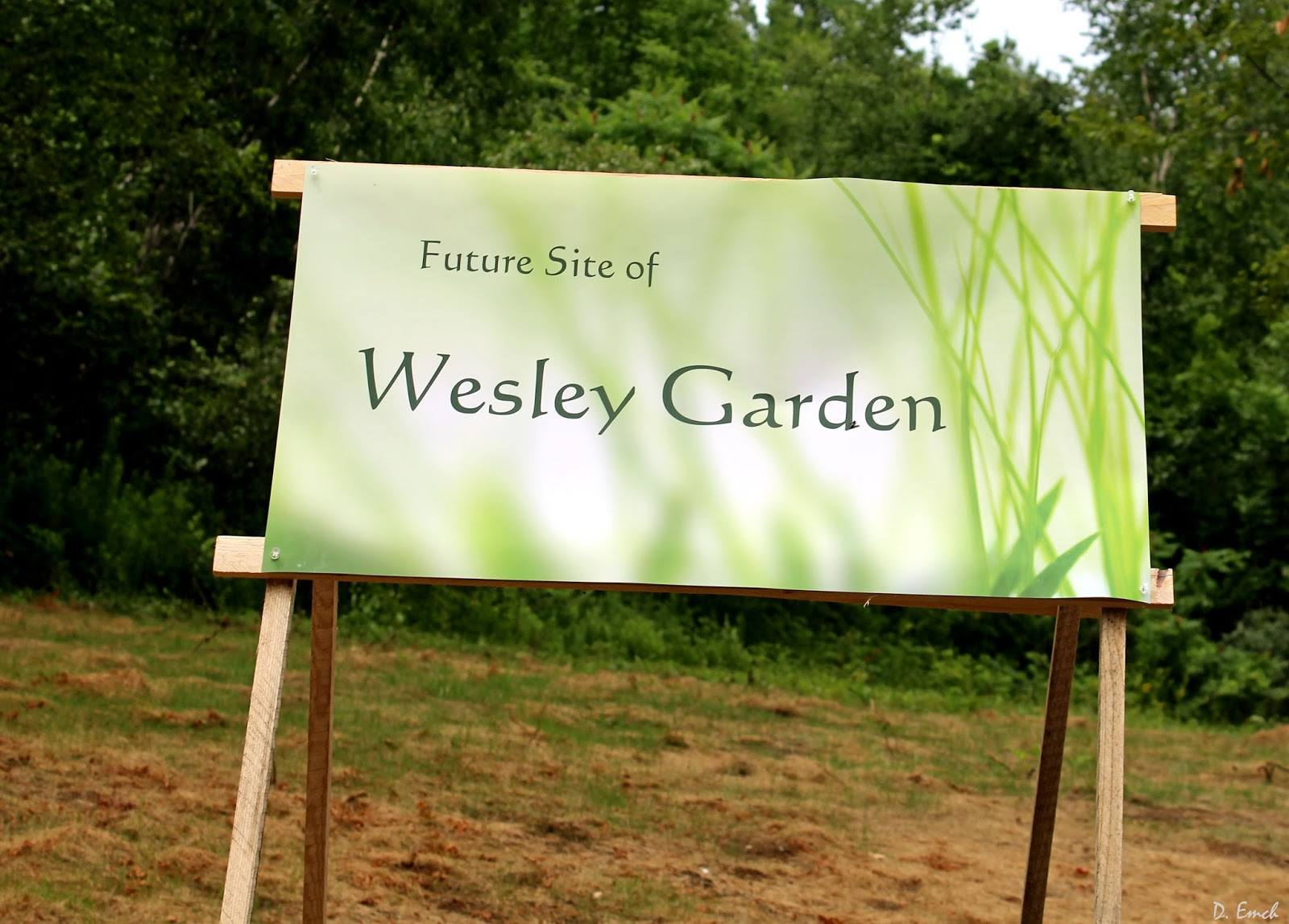 then we are off to the methodist church where they have acquired six acres to be used as a formal garden - Wesley Gardens Nursing Home