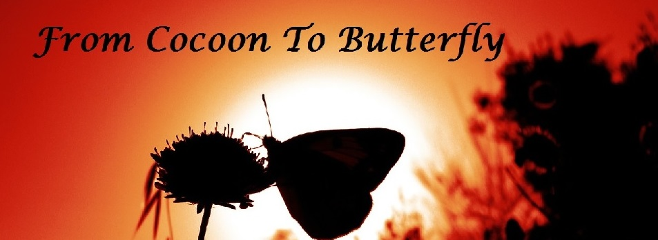 From Cocoon to Butterfly