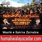 http://www.humaliwalayazadar.com/2015/10/anjuman-e-mashk-e-sakina-zainabia.html
