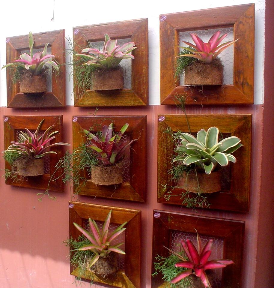 ? Que tal um jardim vertical, usando várias molduras de madeira