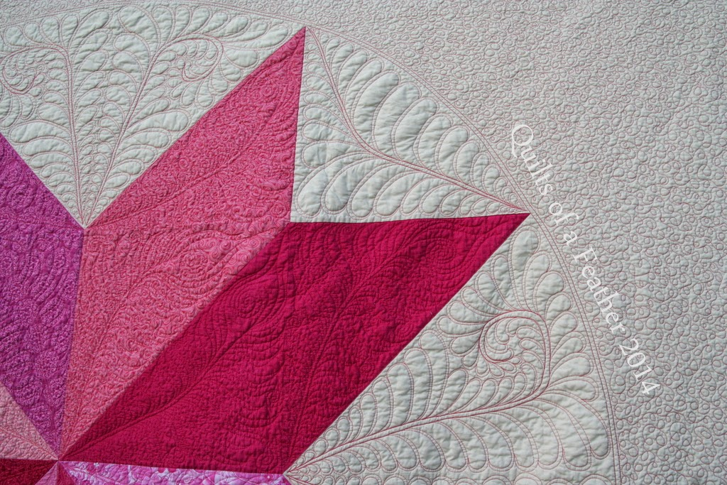 pink feather quilt wall - photo #21