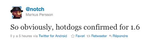 Minecraft Hotdog