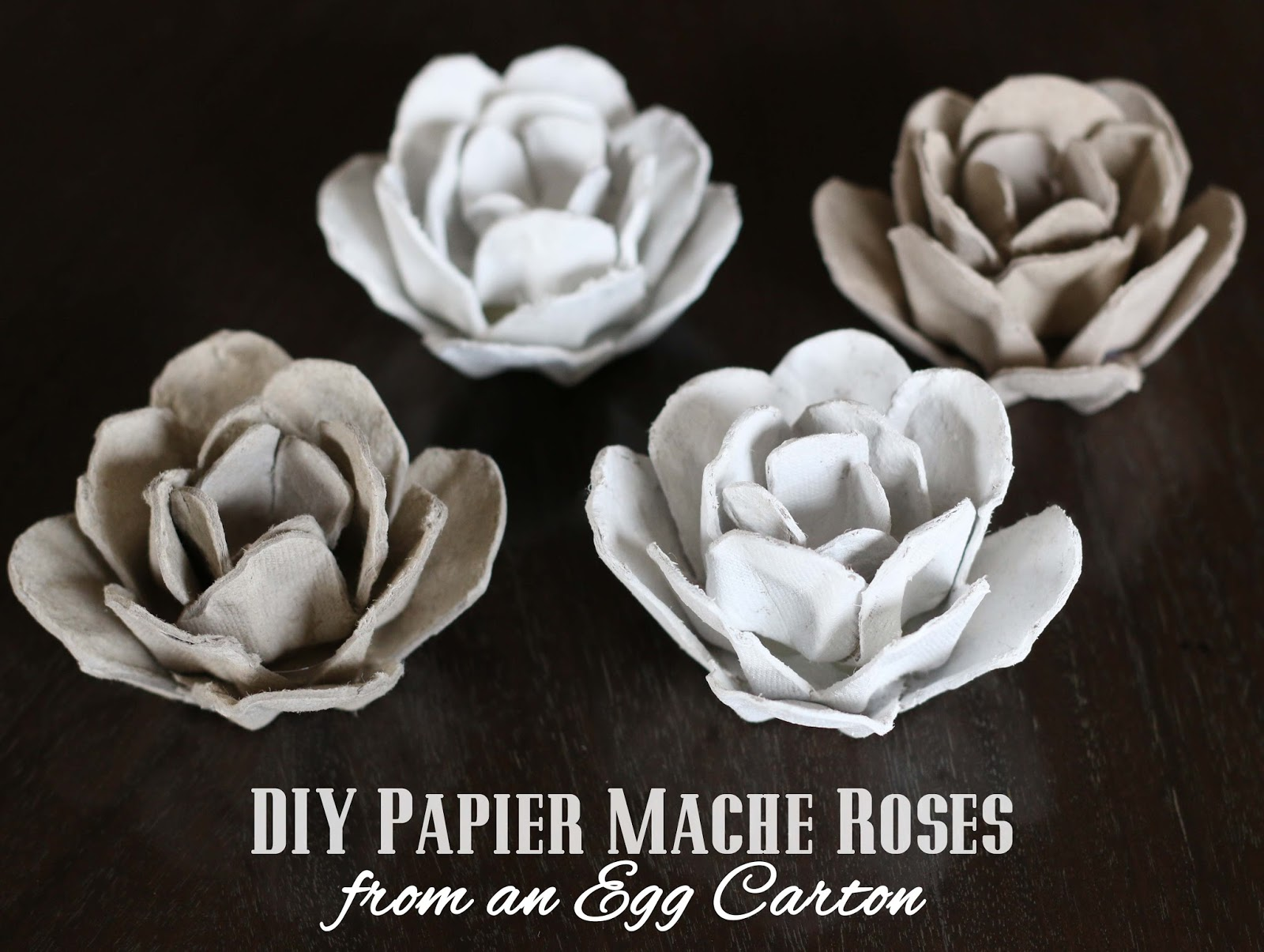Upcycle papier mache roses from an egg carton mightylinksfo