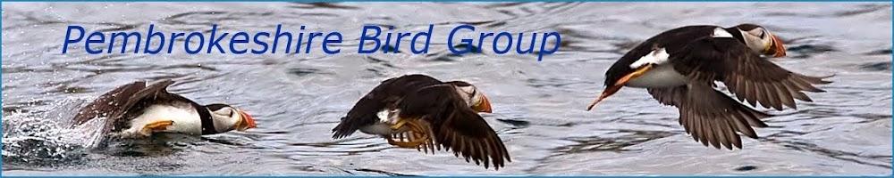 Pembrokeshire Bird Group