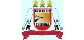 Associação Boca do Rio Cultural