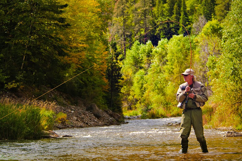 Dakotagraph black hills fall colors report for Fly fishing south dakota