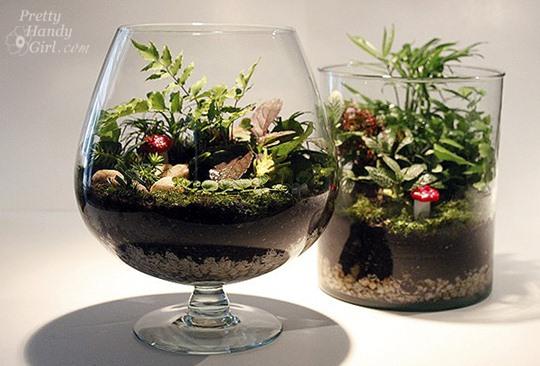 mini jardim em garrafas: do Mundo da Criatividade: *TERRÁRIOSUm jardim dentro de um vidro