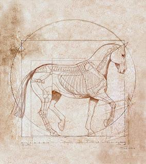 Anatomically Accurate Horse a la Leonardo da Vinci Sale Twomey