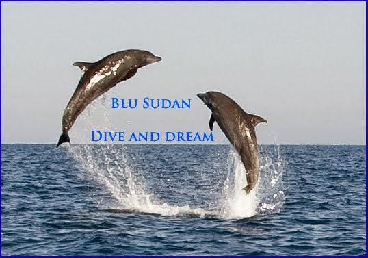 www.blusudan.com