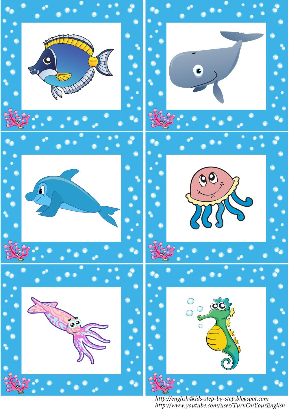 Ocean essay for kids