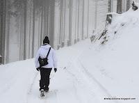 http://strefaulubiona.blogspot.com/2013/12/przerywnik-czyli-zimowy-wypad.html
