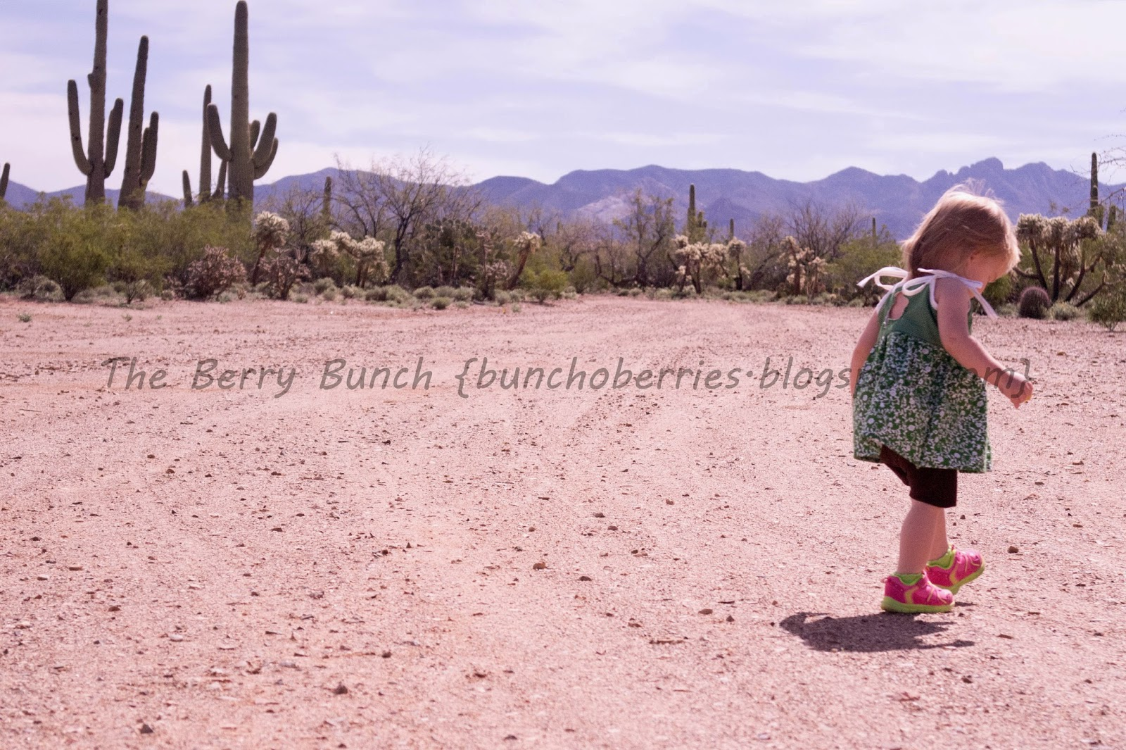 THe Berry Bunch: Bella Sunshine Design Holiday Cutout Dress: Blog Tour