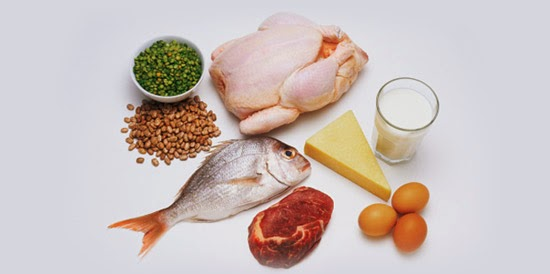 Fungsi Protein, pengertian Protein, manfaat Protein, khasiat Protein