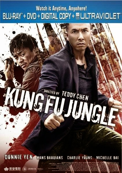 Kung Fu Jungle 2014 Hindi Dubbed BRRip 480p 300mb ESub