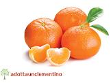 Adotta un Clementino