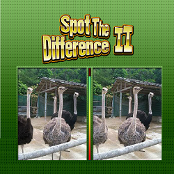Spot the Difference II