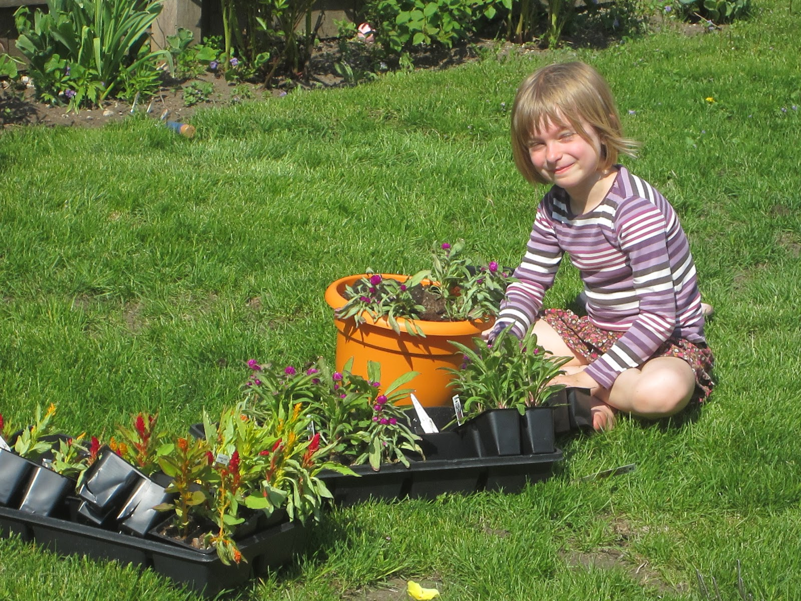 Annabelle and felix of flowers for spring the kids pitched in to help it turns out that annabelle has an amazing green thumb she planted 17 pots all by herself izmirmasajfo