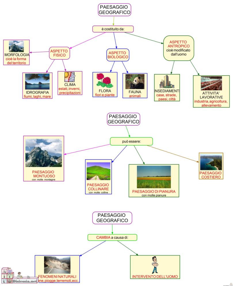 maestra girasole geografia il paesaggio geografico