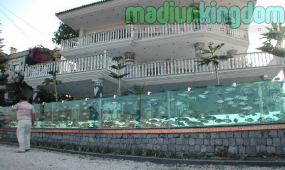 Foto dan Video Seorang Pengusaha Mengganti Pagar Villa Dengan Sebuah Aquarium