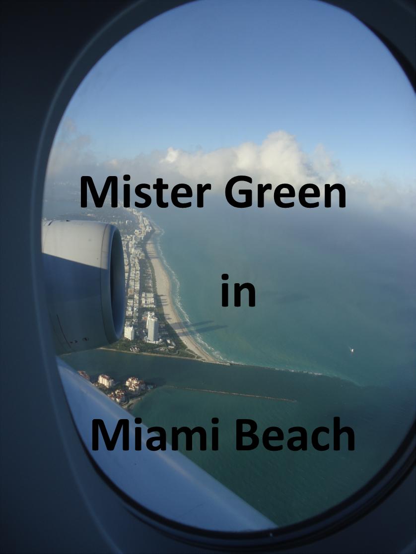 Mister Green in Miami