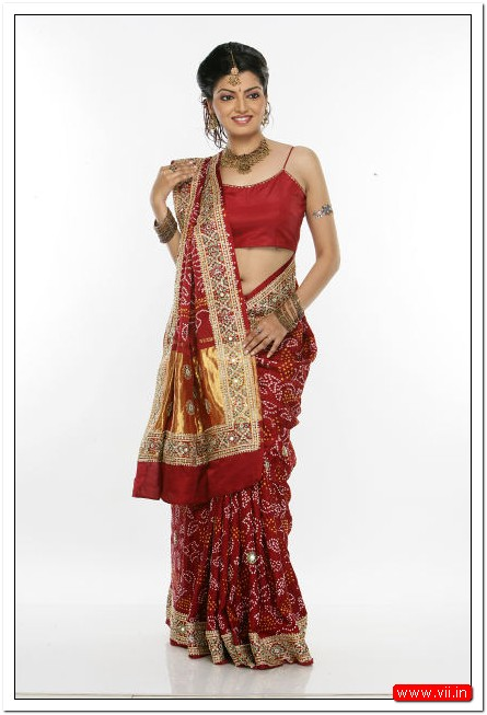 Fashion Style Gujarati Brocade Saree