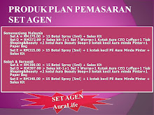 PLAN PEMASARAN SET AGEN
