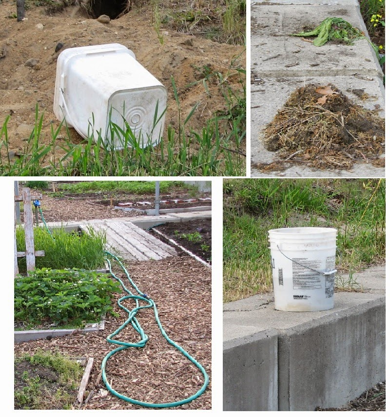 Davis Park Community Garden Some simple rules for the garden