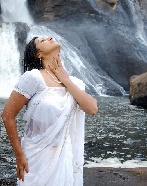 Actress Keerthi Chawla Hot Wet White Saree Photos