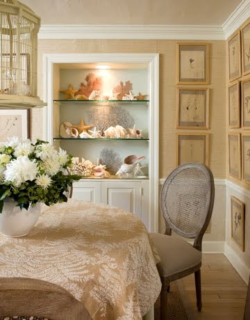 shell display bookcase