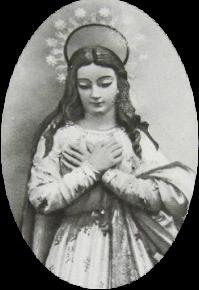 ... llevando siempre por estrella de vuestros caminos a María Inmaculada...